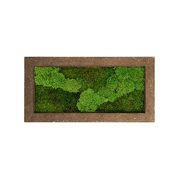 Zelené stěny - Mechový obraz rock 100x50cm 50%silver+50%flat mechu