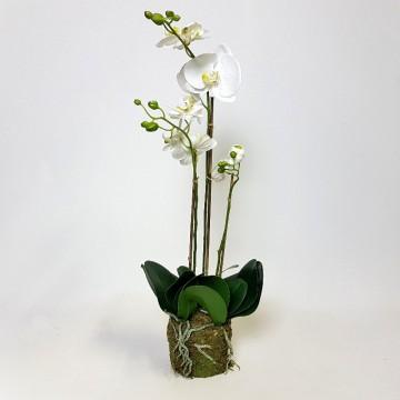 Umělé květiny - Umělá Orchidej White 3 st. 70cm
