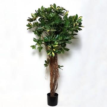 Umělé květiny - Umělá Schefflera arboricola 140cm