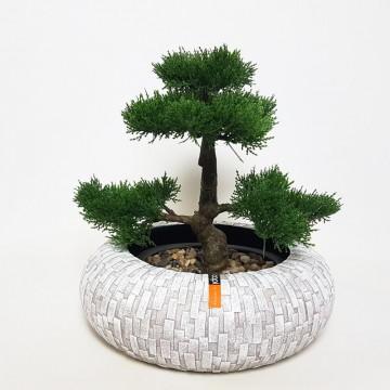 Luxusní květináče - Bonsaj mísa Capi Stone uzavřená šedá 35x10cm