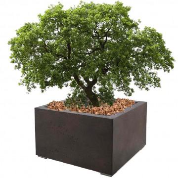 Venkovní květináče - D-lite Low Cube S Rusty Iron Concrete 60x60x40cm
