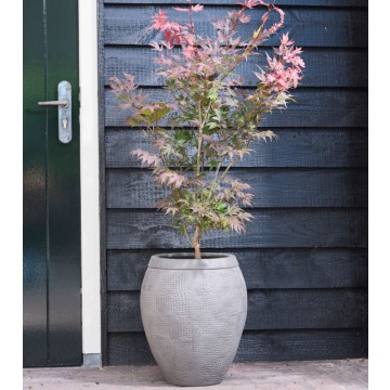 Venkovní květináče - Breeze couple grey 41x48cm