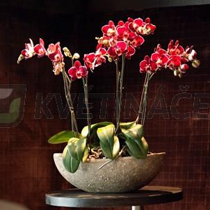 Luxusní květináče - Polystone Rock Boat 68x33x18cm