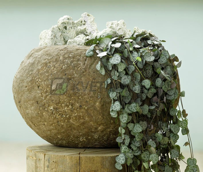 Luxusní květináče - Polystone Rock Findling 50x43x25cm