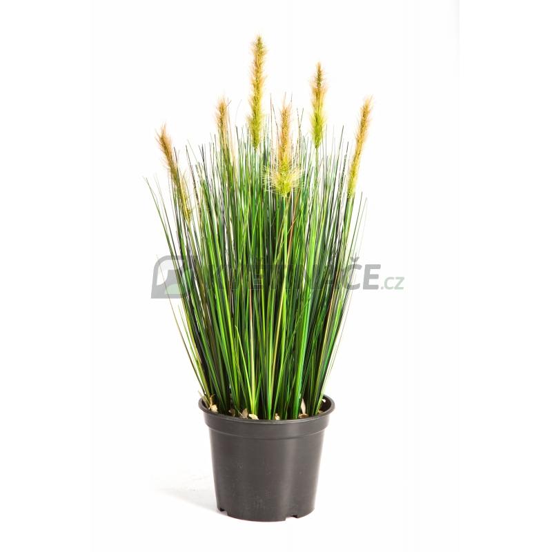 Umělé květiny - Foxtail Grass Green 60cm