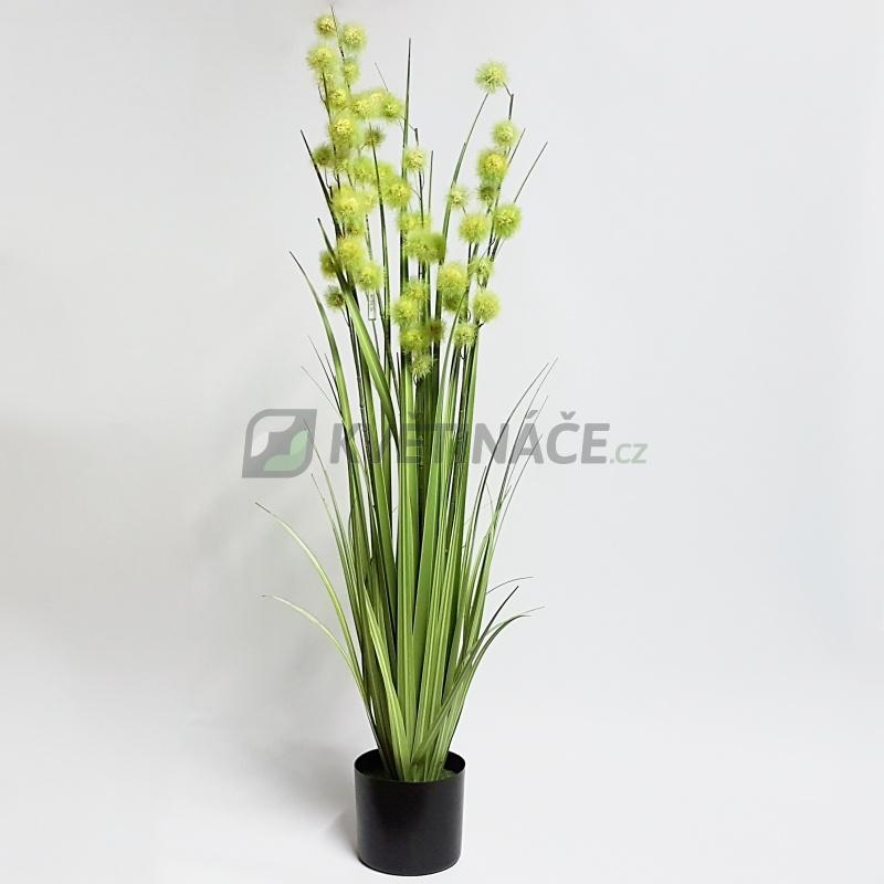 Umělé květiny - Umělá tráva Pompom 120cm