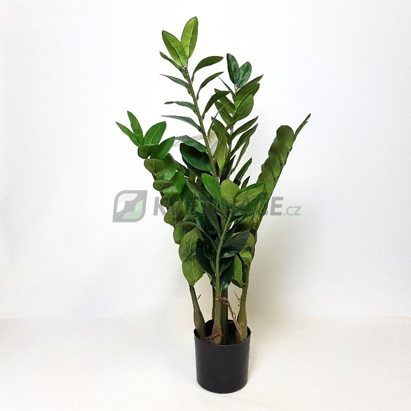 Umělé květiny - Umělý Zamioculcas Smaragd 70cm