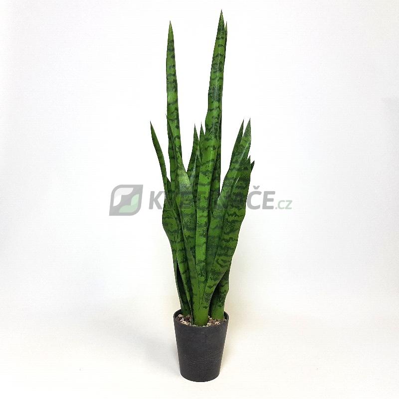 Umělé květiny - Umělá Sansevieria zelená 81cm