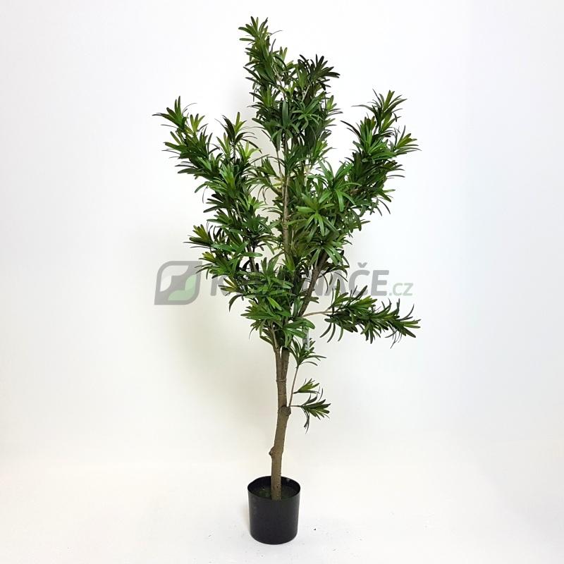 Umělé květiny - Umělý Podocarpus 120cm