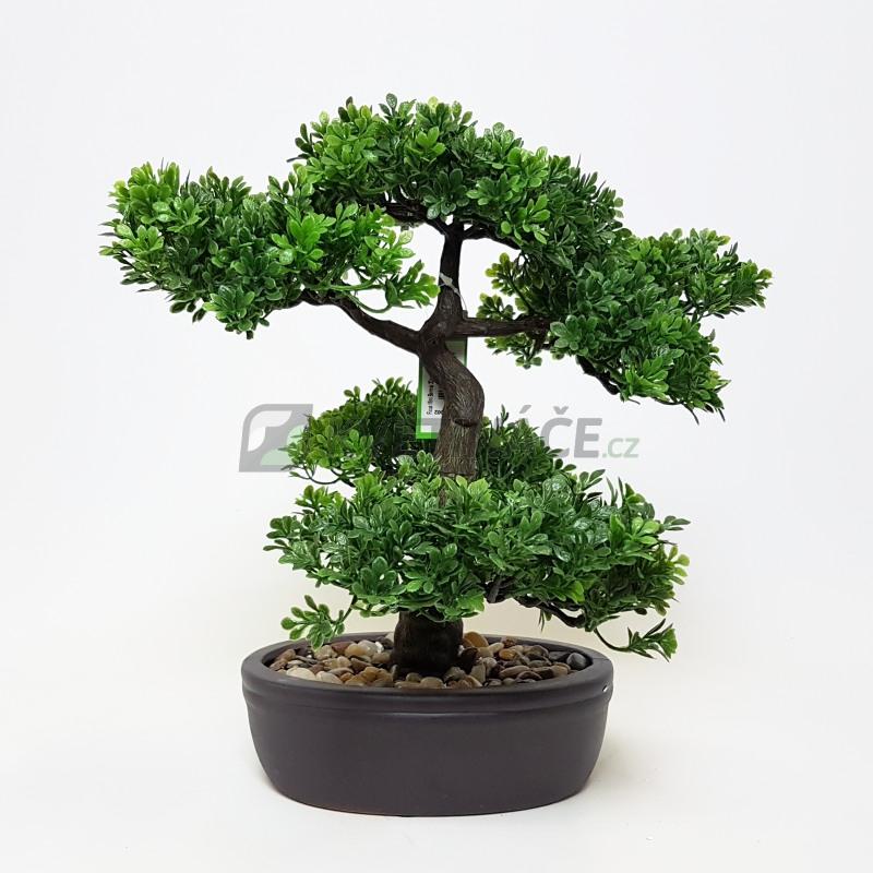 Umělé květiny - Umělá bonsaj Ficus 32cm