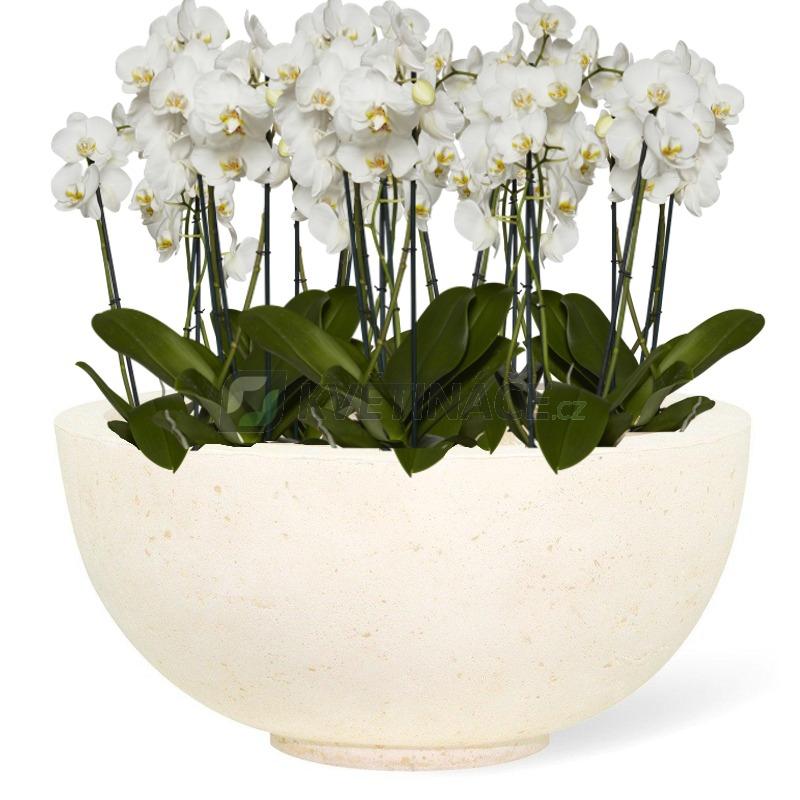 Venkovní květináče - Ego Plus Creme 50x22cm