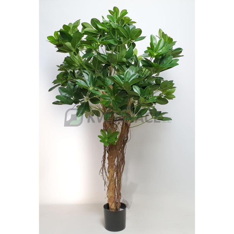 Umělé květiny - Umělá Schefflera arboricola 110cm