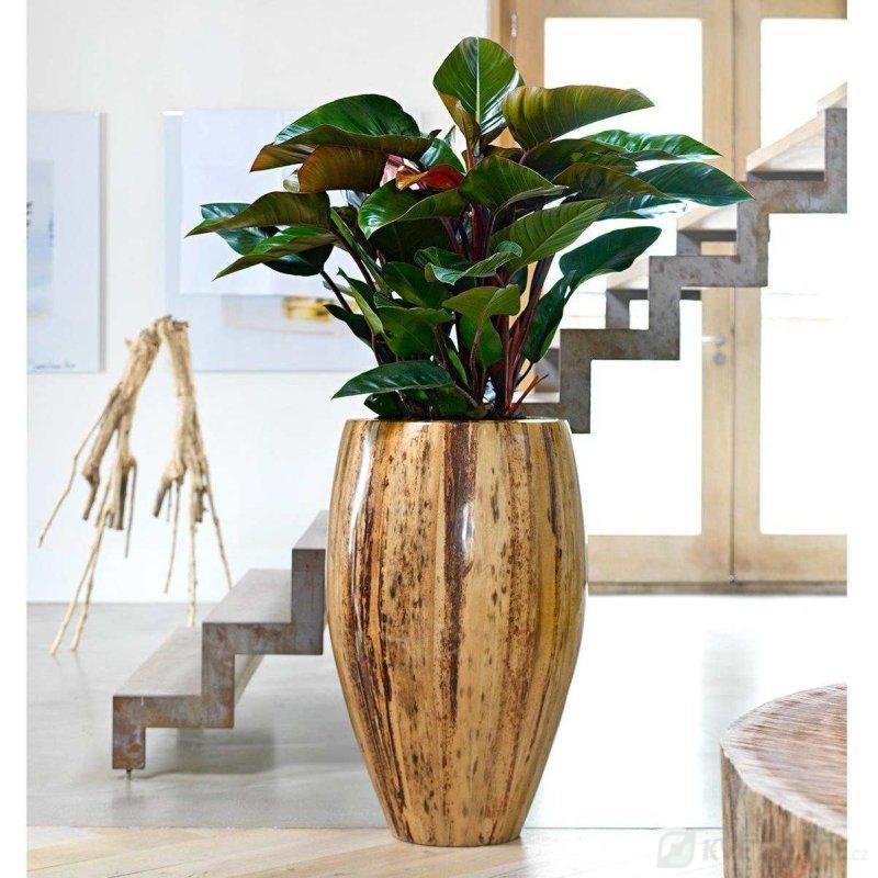 Luxusní květináče - Banana Leaf 48x90cm
