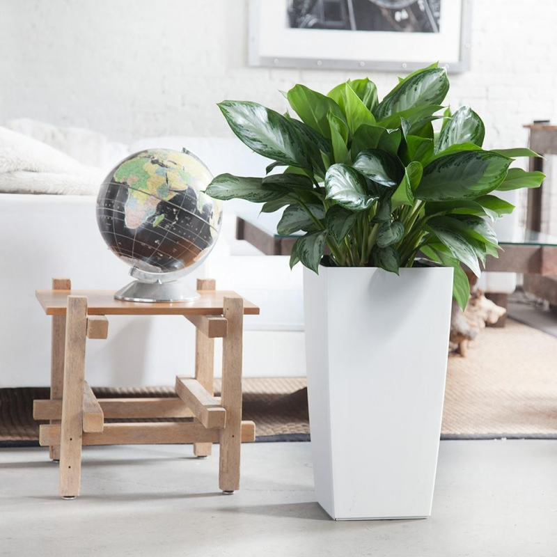 Lechuza květináče - Lechuza Cubico Trend 30 White komplet