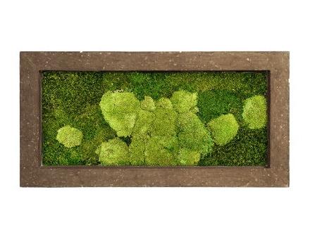 Zelené stěny - Mechový obraz rock 100x50cm 50%ball+50%flat mechu