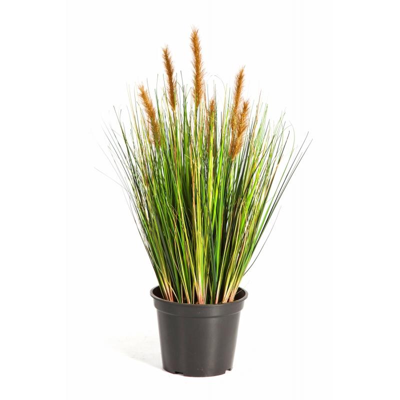 Umělé květiny - Foxtail Grass Brown 60cm