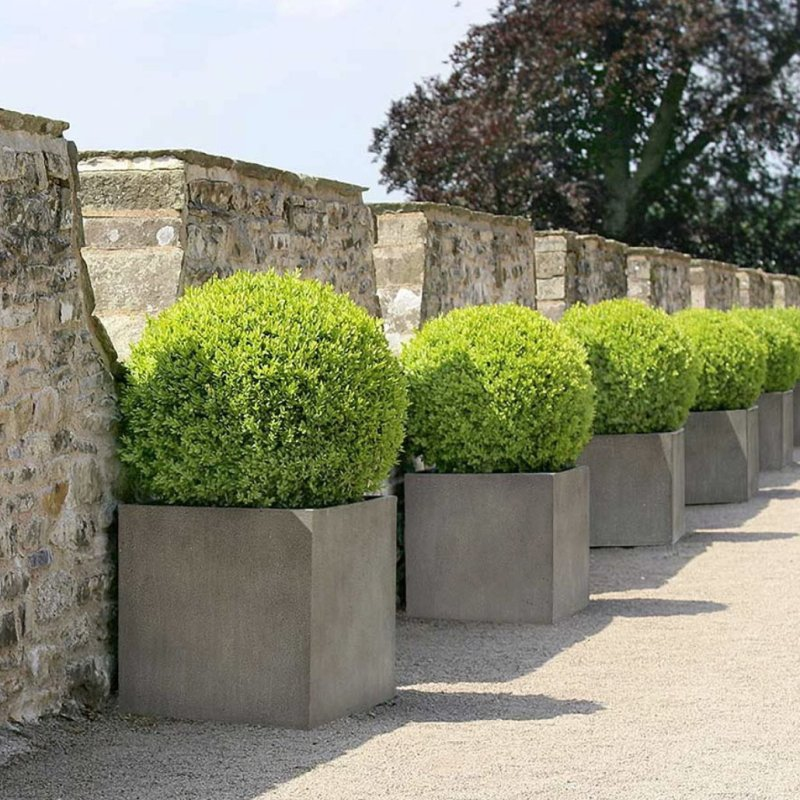 Venkovní květináče - D-lite Cube L Natural Concrete 50x50x50cm