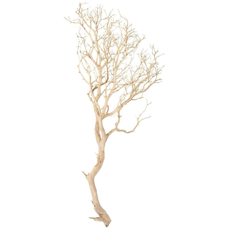 Dekorace - Manzanita natural 120cm