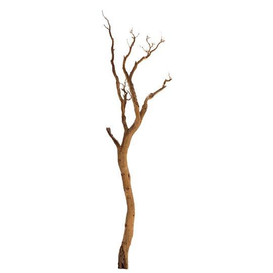 Dekorace - Manzanita natural 390cm