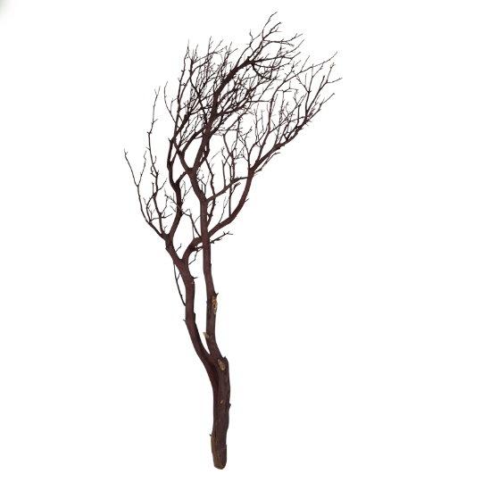 Dekorace - Manzanita brown 90cm