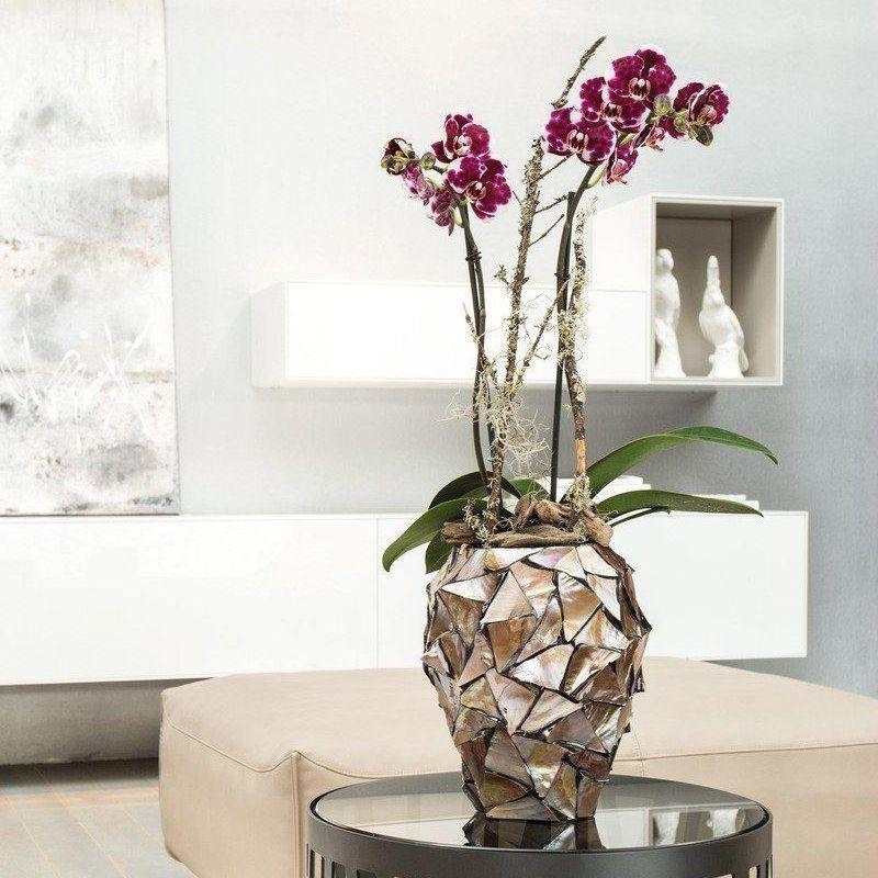 Luxusní květináče - Shell Brown 17x24cm