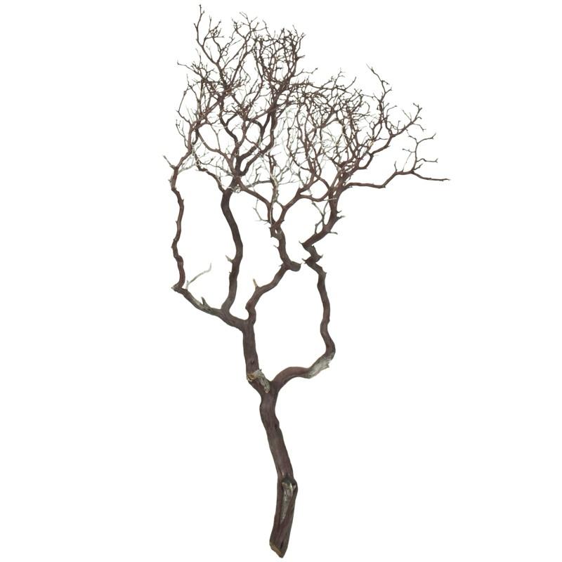 Dekorace - Manzanita brown 120cm