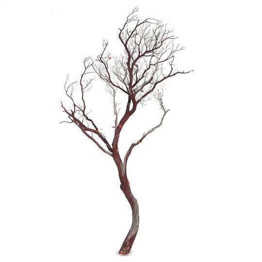 Dekorace - Manzanita brown 180cm