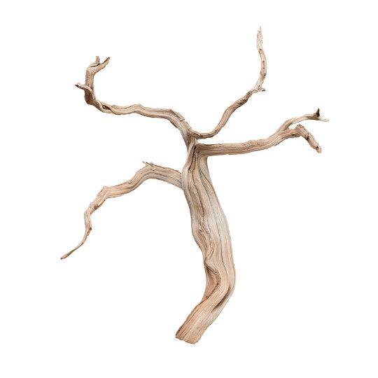 Dekorace - Dekorativní dřevěná větev Branchy 40cm