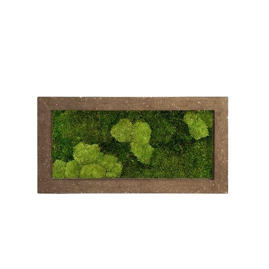 Zelené stěny - Mechový obraz rock 100x50cm 30%ball+70%flat mechu