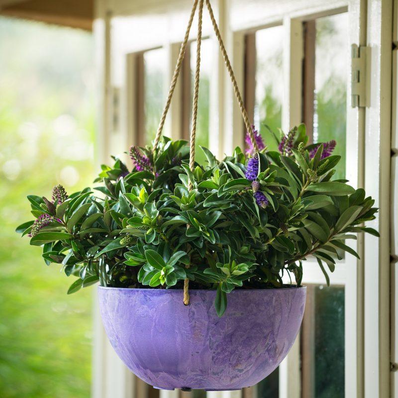 Závěsné květináče - Závěsný květináč Fiona fialová 25x12cm