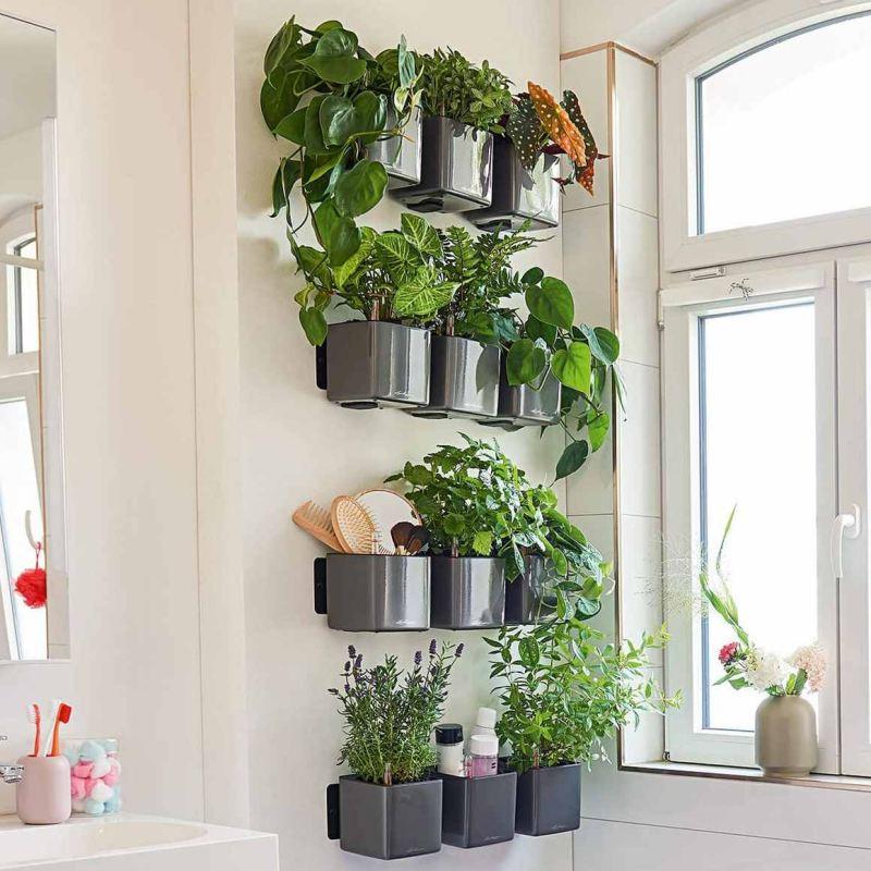 Lechuza květináče - Lechuza zelená stěna premium antracit komplet