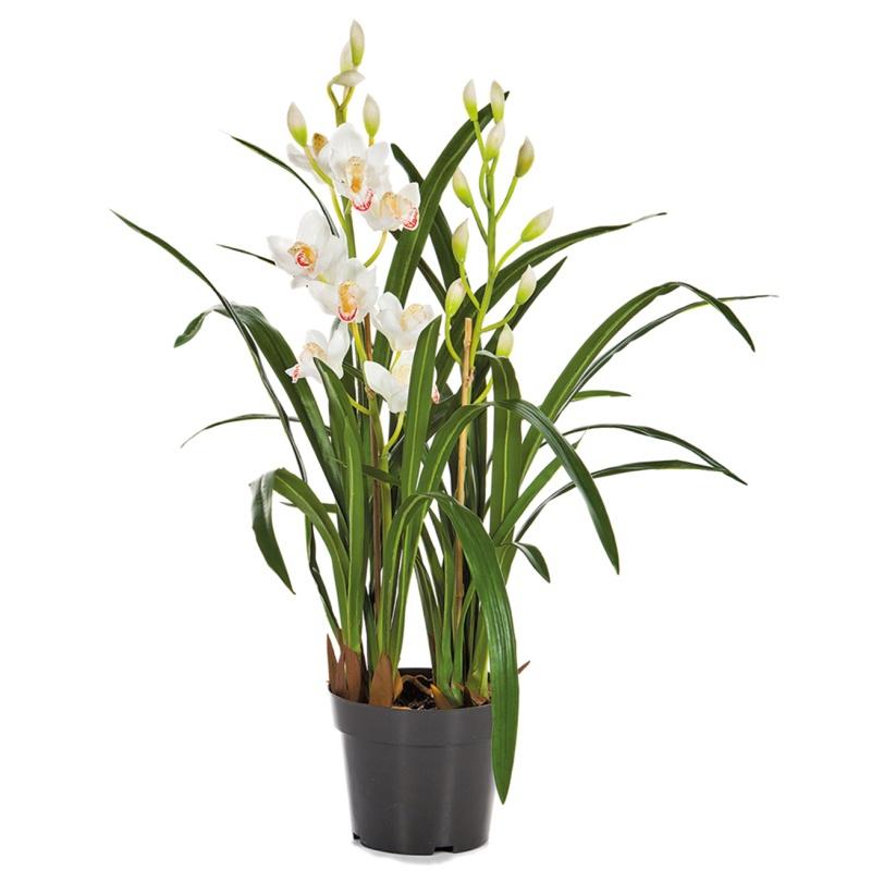 Umělé květiny - Umělá Orchidej Cymbidium bílá 80cm