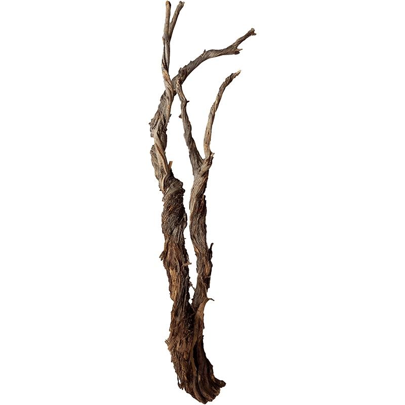 Dekorace - Dekorativní dřevěná větev Raw 150cm