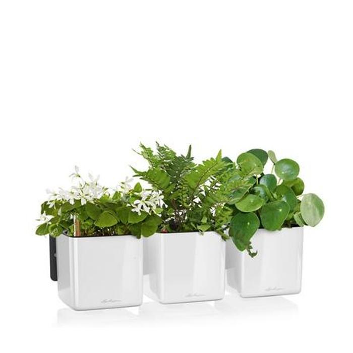 Lechuza květináče - Lechuza zelená stěna premium white komplet