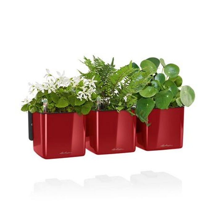 Lechuza květináče - Lechuza zelená stěna premium scarlet komplet