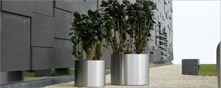 Nerezov kv tin superline standard na krou ku 80x52cm for Interieur beplanting