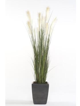 Umělé květiny - Pampas Grass 150cm