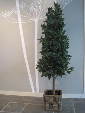 Umělé květiny - Umělý Laurus 90cm