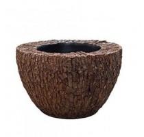 Scorza Pinus Bowl 56x35cm