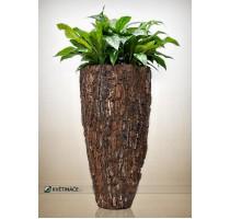 Scorza Pinus Partner 53x110cm