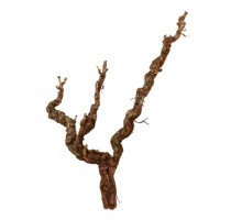 Dekorativní dřevěná větev Grapewood Natural 3 Heads