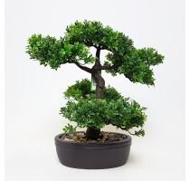 Umělá bonsaj Ficus 32cm