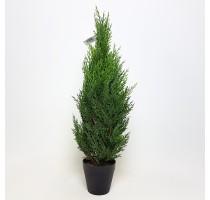 Umělý Juniperus 60cm