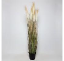 Umělá tráva Pampas 120cm