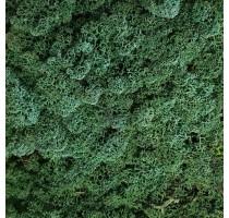 Stabilizovaný mech Island tmavě zelený 4kg-0,5m2