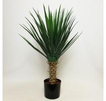 Umělá Yucca Rostrata 75cm
