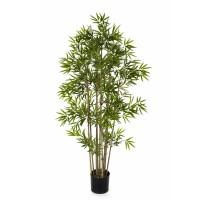 Bamboo Tuft 210cm