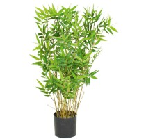 Bamboo Oriental Tuft 70cm
