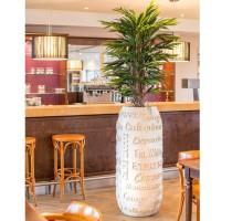 Café natural 53x120cm