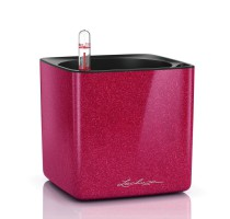 Lechuza Cube Premium 14 Cherry komplet